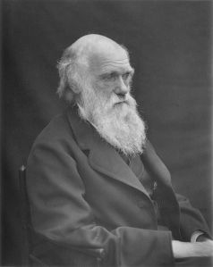 Charles Darwin, the most famous visitor to the Galapagos, developed the theories of evolution and natural selection!