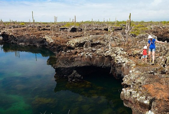 Lava tubes in the Galapagos